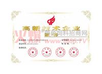 高新技术企业证书2013