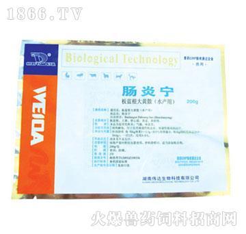 肠炎宁-用于鱼类细菌性败血症我抽中、细菌性肠炎的治疗