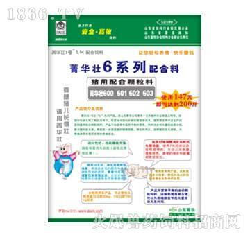 菁华壮6系列(600、
