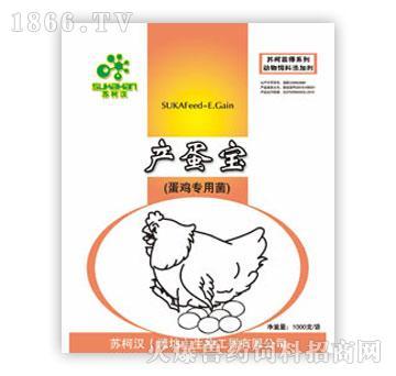 增收产蛋宝(蛋鸡专用菌)-维持肠道生态平衡