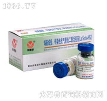 鸡新城疫、传染性支气管炎二联活疫苗(La Sota + H52)