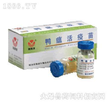 鸭瘟活疫苗