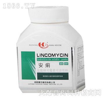 盐酸林可霉素可溶性粉-安痢-惠中