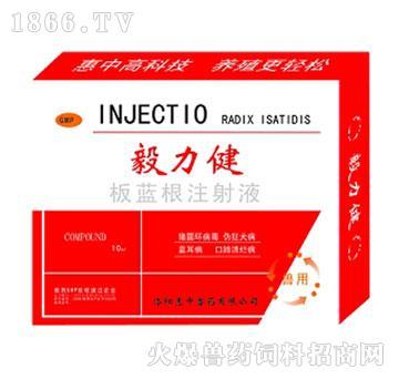 板蓝根注射液-抗病毒、清热解毒、提高机体免疫力
