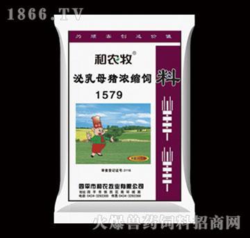 妊娠母猪浓缩饲料-1579-和农