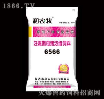 妊娠期母猪浓缩饲料-6566-和农
