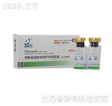 鸡新城疫耐热保护剂SPF活疫苗(La Sota 株)