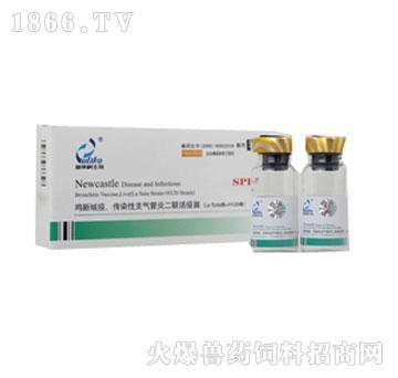 鸡新城疫、传染性支气管炎二联活疫苗(La Sota株+H120株)