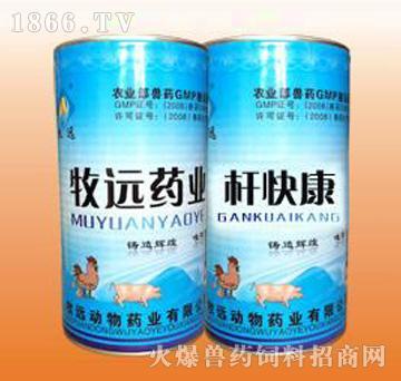 杆快康-禽沙门氏菌专用药、主治白痢、伤寒、副伤寒