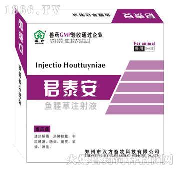 君泰安-主治肺痈、痢疾、乳痈、淋浊