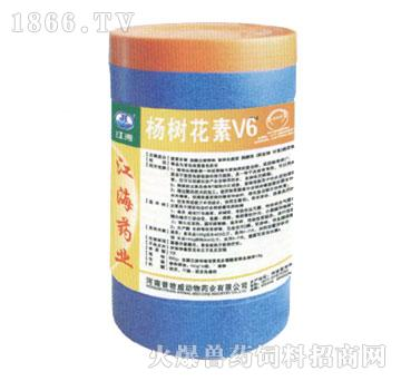 杨树花素V6-江海