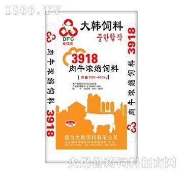 大韩-肉牛浓缩饲料3918