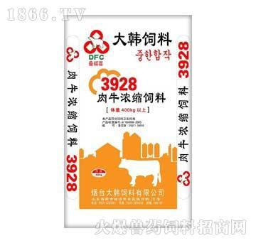 大韩-肉牛育肥后期3928
