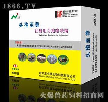 注射用头孢噻呋钠-头孢至尊-主治传染性胸膜肺炎、肺疫