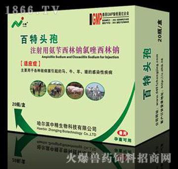 注射用氨苄西林钠氯唑西林钠-百特头孢