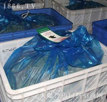 济泰-水貂鲜配合饲料(贴食)
