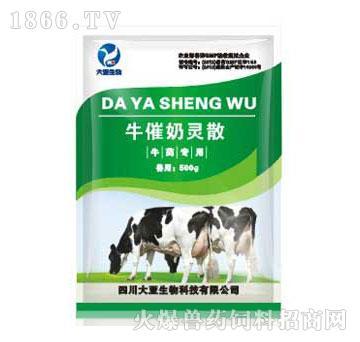牛催奶灵散-主治产后乳