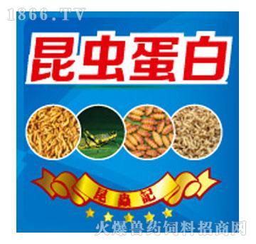昆虫蛋白粗蛋白≥65%-法布尔