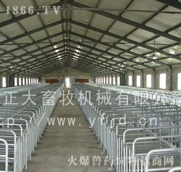 单体栏-正大畜牧