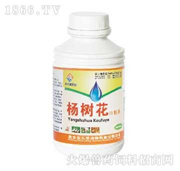 杨树花口服液-主治细菌性、病毒性肠炎