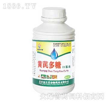 黄芪多糖口服液-清热解毒、抗菌消炎、增强机体免疫力