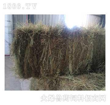 高密度羊草捆