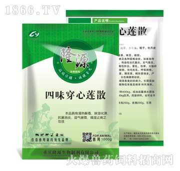 四味穿心莲散-主治鸡的大肠杆菌性腹泻、鸭肠炎、拉稀