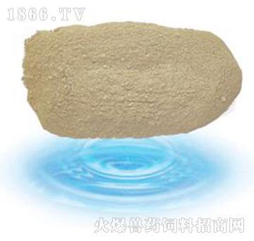 益酶大豆蛋白