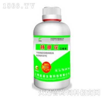 杨树花口服液-主治肝周