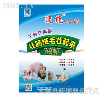 美国泛华生物技术-a饲料饲料兽药招商平面设计师在武汉好找工作吗图片