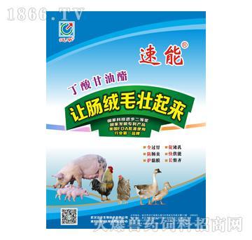 武汉泛华生物技术-a兽药兽药斜线v兽药如何绘制多单元格饲料图片
