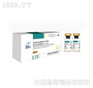 高致病性猪繁殖与呼吸综合征活疫苗(JXA1-1R)