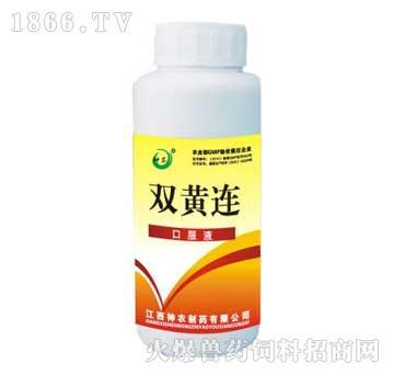 双黄连-主治斑肾、支气