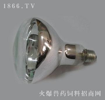 红外线灯泡(防水防爆)