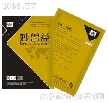 金芪V(蛋禽专用)(多维)-用于蛋禽维生素、氨基酸、微量元素缺乏症