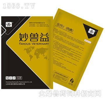 金芪V(肉禽)(多维)-用于肉禽维生素、氨基酸、微量元素缺乏症