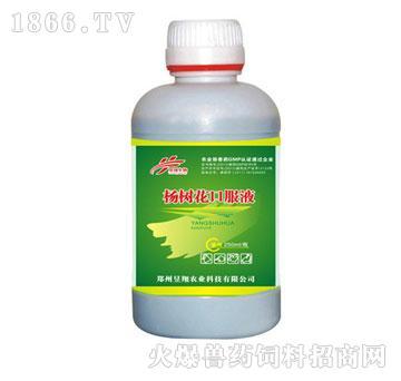 杨树花口服液-调节胃肠