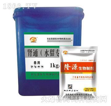 肾通(水貂专用)-淋化石、利水通尿、清热化湿