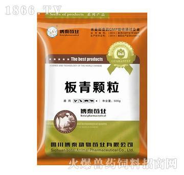 板青颗粒-抗菌消炎、抗病毒,增强免疫力,鸡流行性感冒专用药