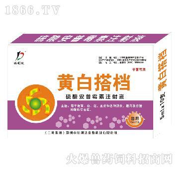 黄白搭档-用于猪黄、白、红、血痢和各种肠炎、腹泻