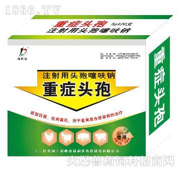 重症头孢-主治高烧不退或持续低烧