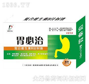 胃必治-用于防治B族维生素缺乏所致的贫血、消化障碍