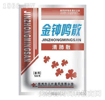 金钟鸣散-主治肺热咳喘、咽喉肿痛