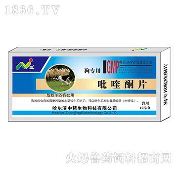 狗专用吡喹酮片-用于治疗动物血吸虫病
