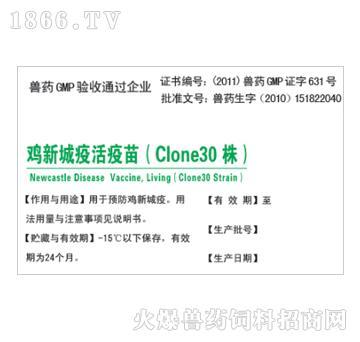 鸡新城疫活疫苗(Clone30株)-预防鸡新城疫