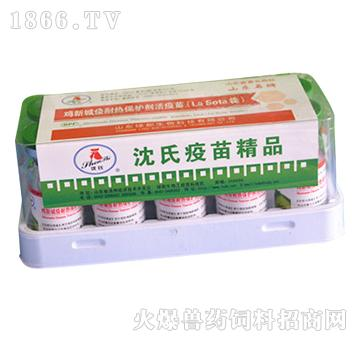 鸡新城疫耐热保护剂活疫苗-预防鸡新城疫