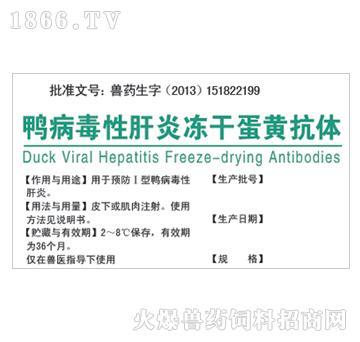 鸭病毒性肝炎冻干蛋黄抗体-用于预防Ⅰ型鸭病毒性肝炎