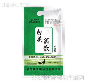 白头翁散-清热燥湿、涩肠止痢、行气止痛、温中和胃