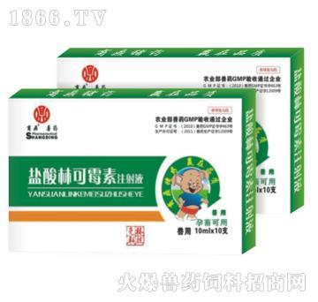 克林联抗-盐酸林可霉素