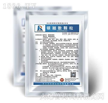 银翘散颗粒-猪丹毒专用药、主治猪口蹄水疱病